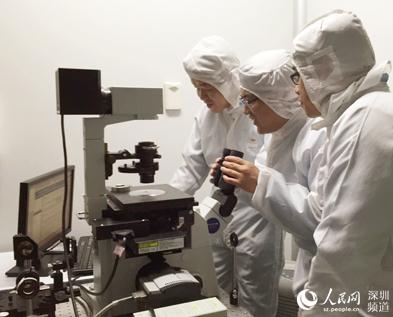 深圳孔雀团队带头人张晗:无尘实验室里的科技