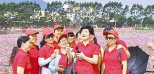 深圳大鹏老人行走美丽乡村        来自8个社区200余位老人,行走在大鹏的乡间小路上,领略春天的明媚阳光和大自然的美好风光。