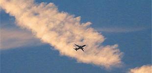 白鹭伴晚霞 飞机越彩带        日落时分,天空上飘着罕见的彩带,时而飞机穿越彩带,时而白鹭奔向晚霞。