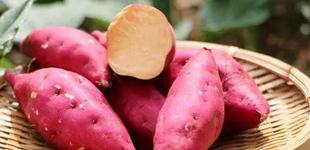 烤红薯致癌是真的吗?