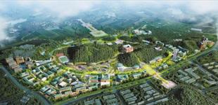 中山大学深圳项目土地整备加快推进