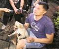 """一居民无证养犬被罚1500元        深圳市城管局开展""""文明养犬""""专项整治行动。"""